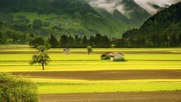 Rosnące ceny gruntów